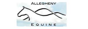 Allegheny Equine